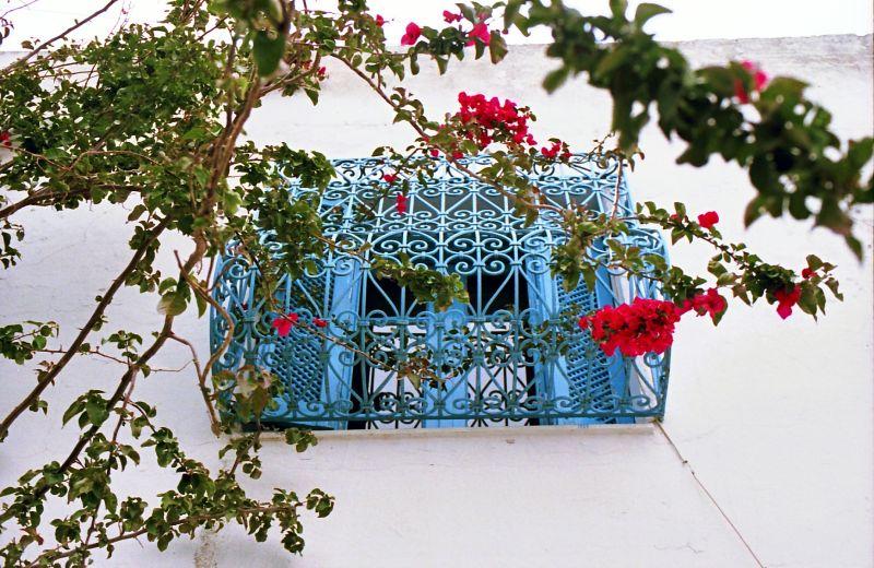 Balcon à Sidi Bou Saïd