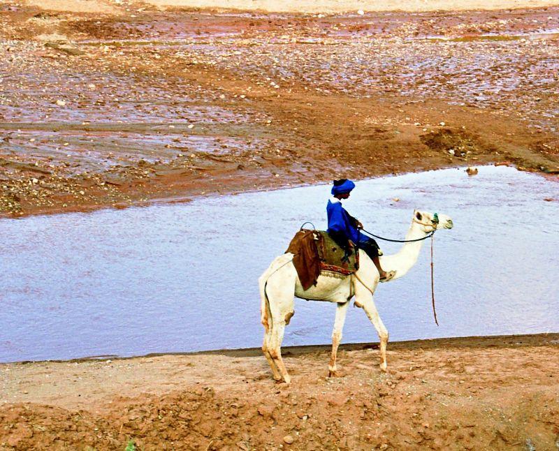 Oued Mellah (Aït Benhaddou)