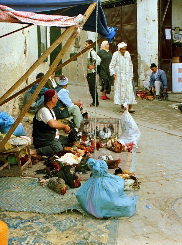 Fès Maroc