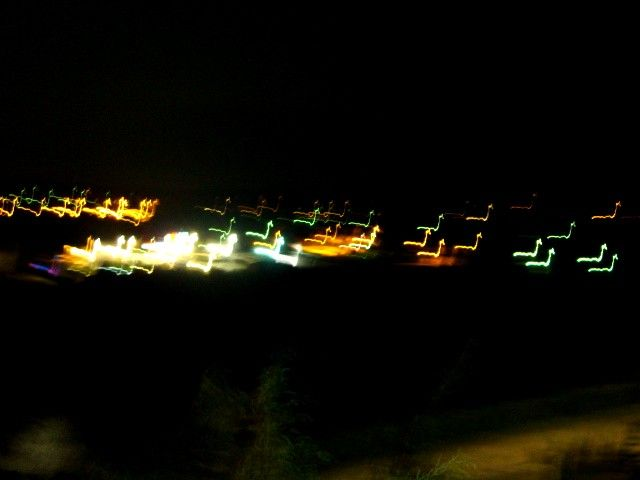 cygnes de lumière