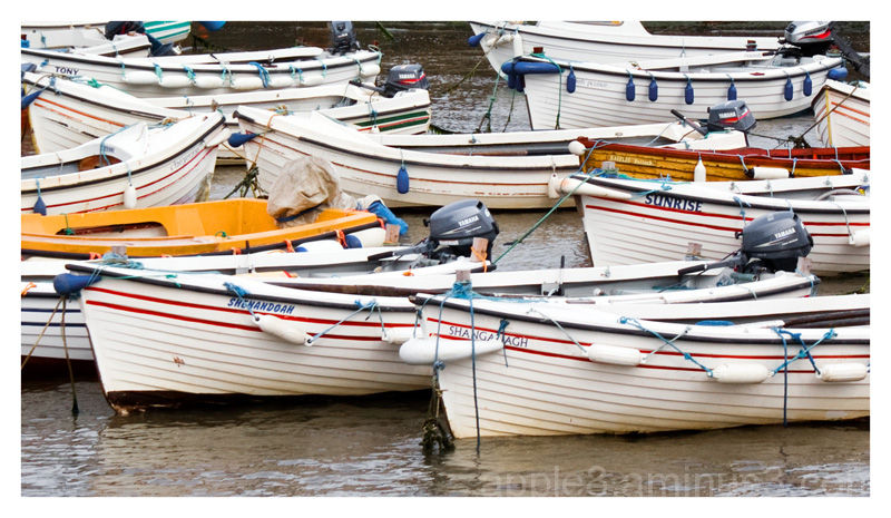 Boats for hire : Bullock harbour