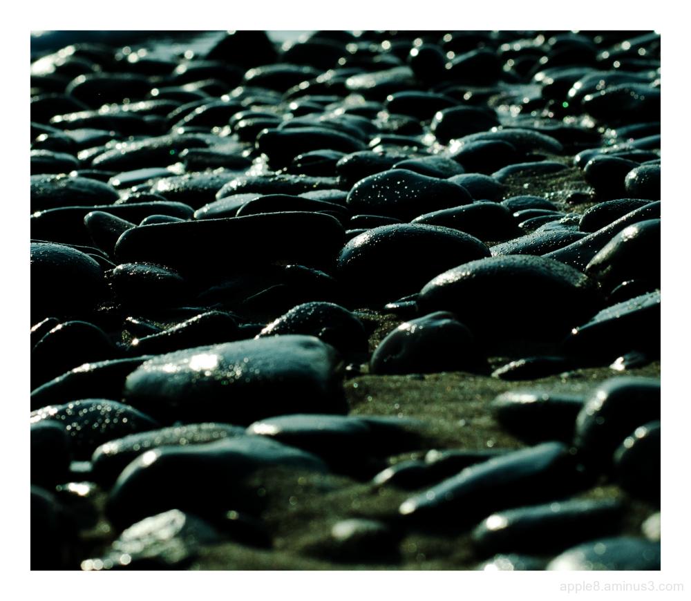 Sea Washed