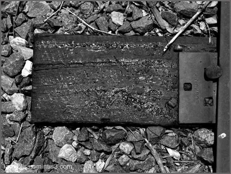 Railroad Tie with Tar