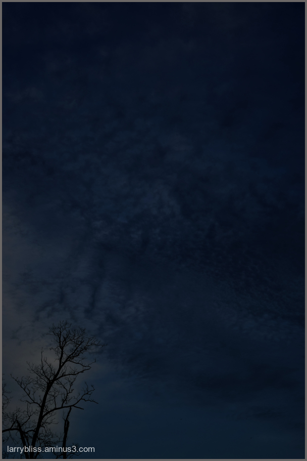 Darkened Evening Sky