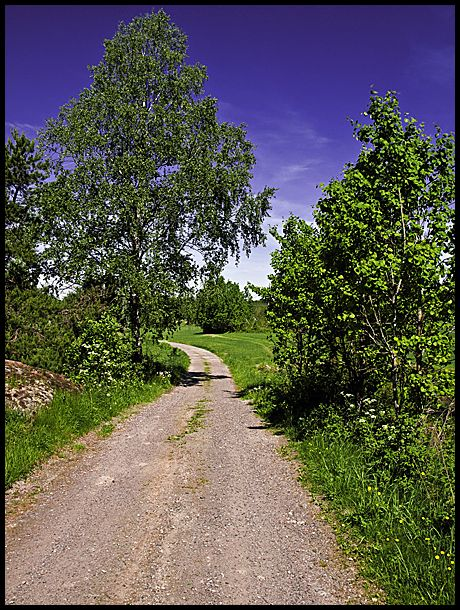 A dirt road in Hobøl, Norway