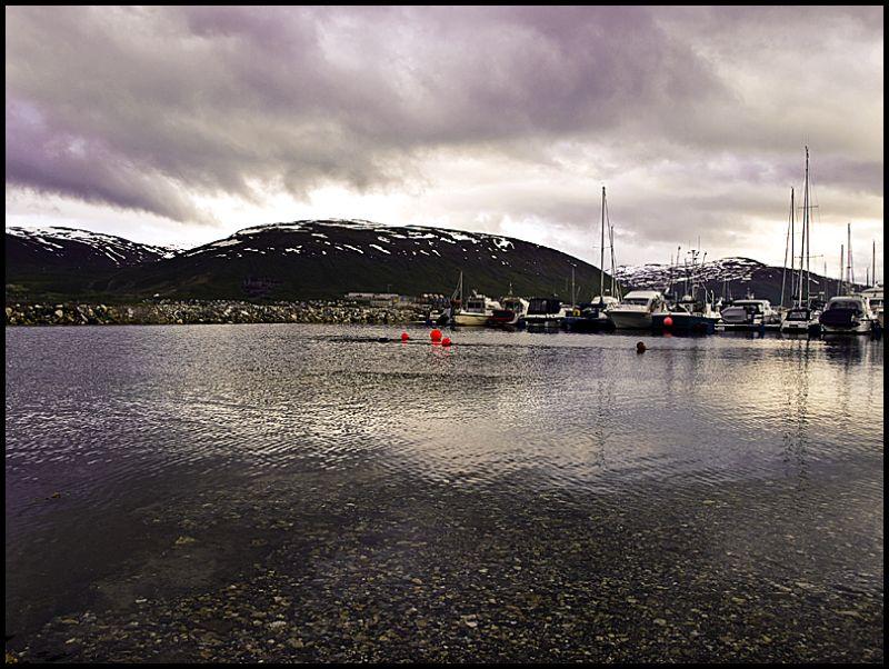View from Skattøra marina in Tromsø