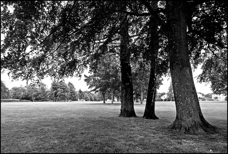 Black and white picture from Melløsparken