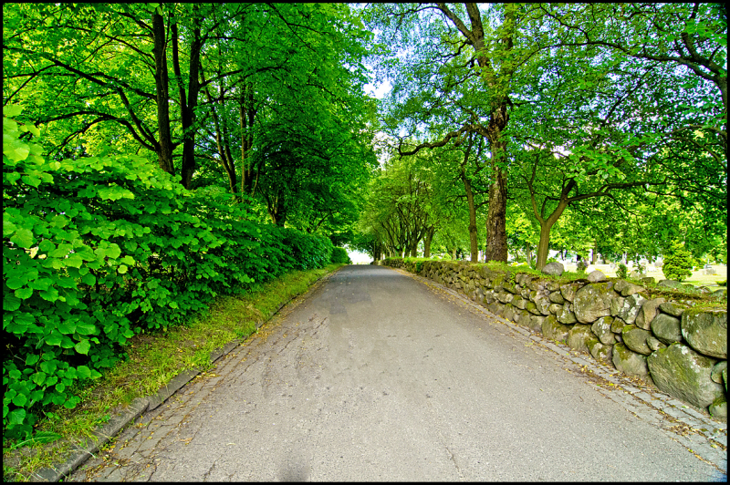 A road in a graveyard in Moss, Norway