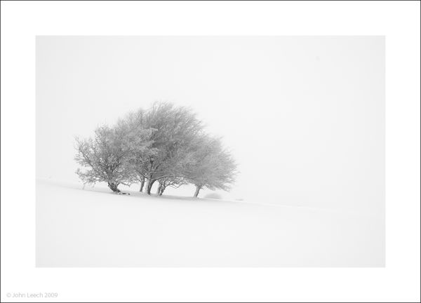 trees mist snow hampsfell lake district landscape