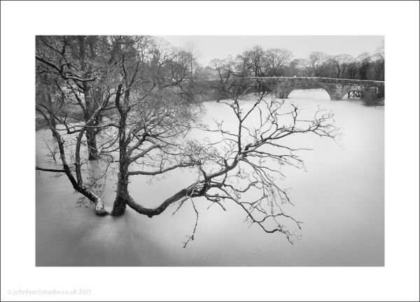 devils bridge flood trees black white