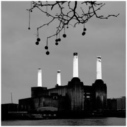 Bobbles over Battersea Power Station