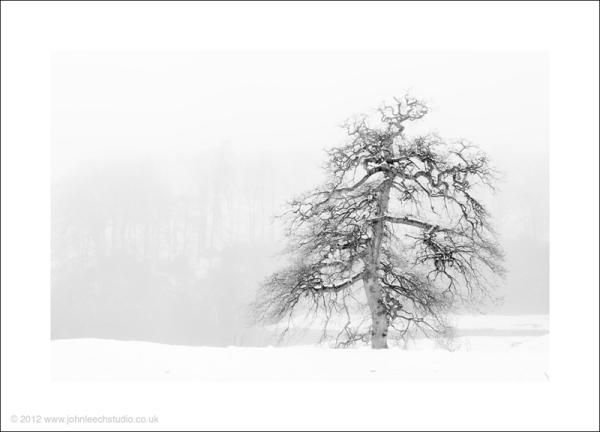 creative landscape photography for sale