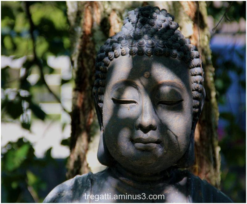 Buddha, statue