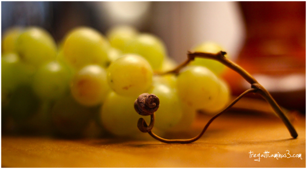 grape, vine, knot