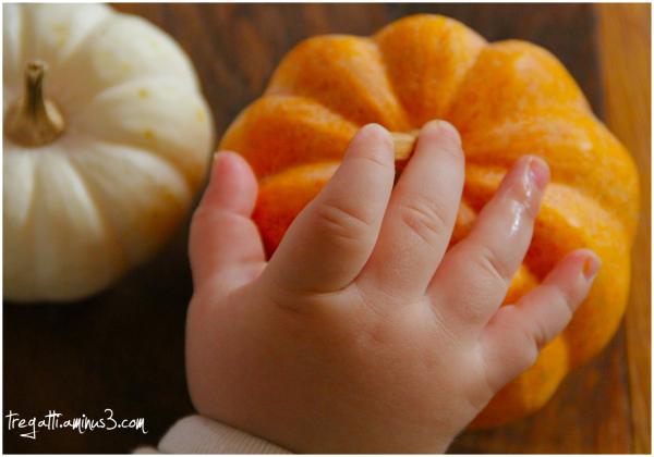 hand, pumpkin, samhain