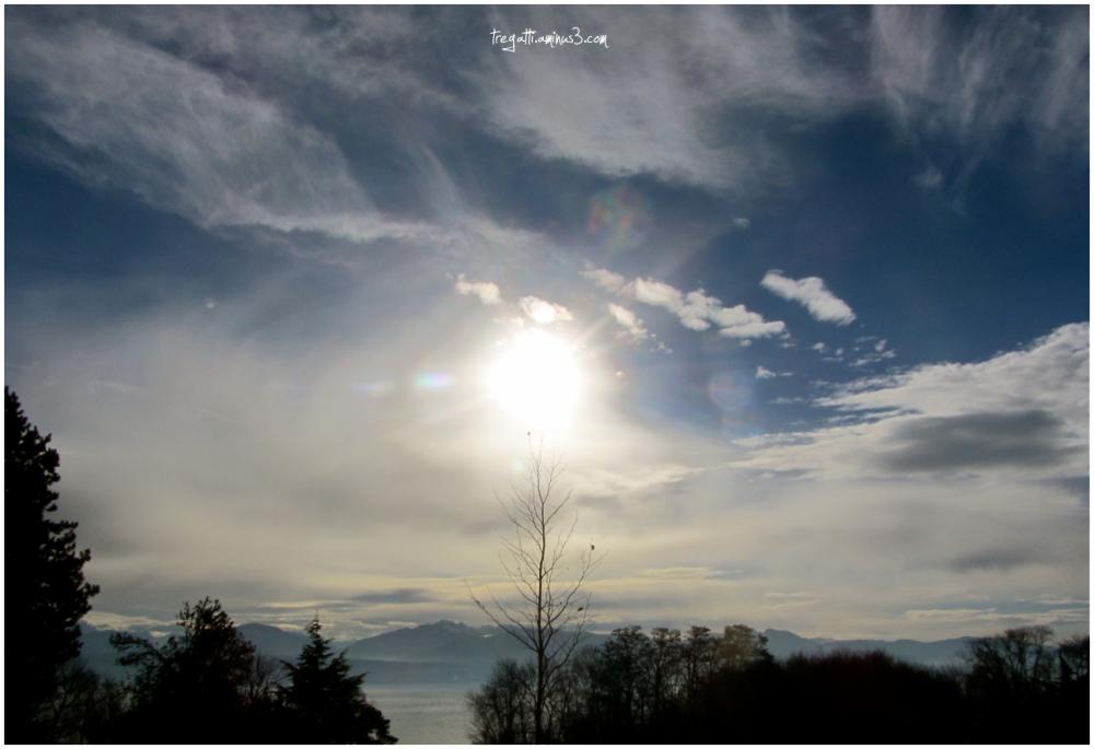 winter sun, trees, lake, mountains