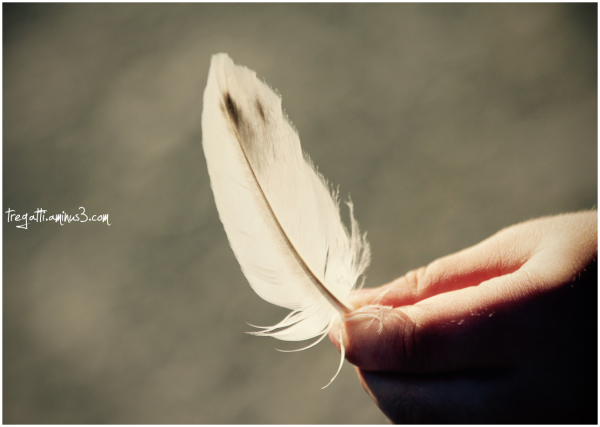 hand, feather