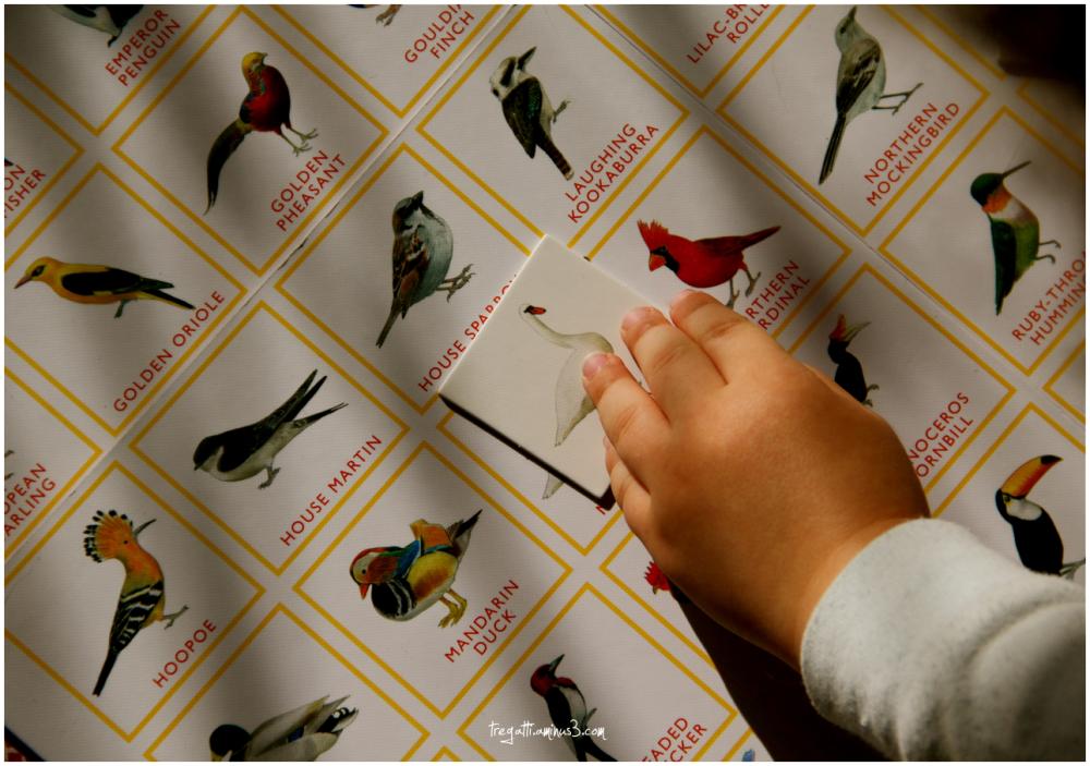 bird, bingo, hand