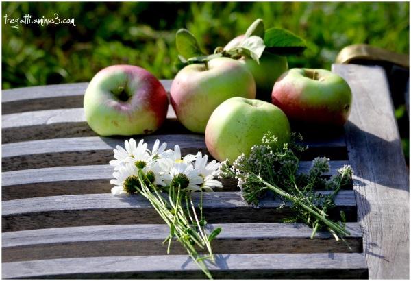 apples, wildflowers