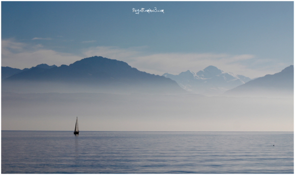 sailboat, lake, mt blanc, duck