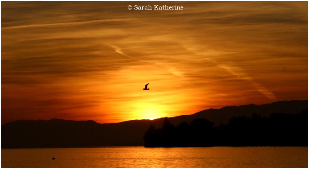 winter sunset gull lake