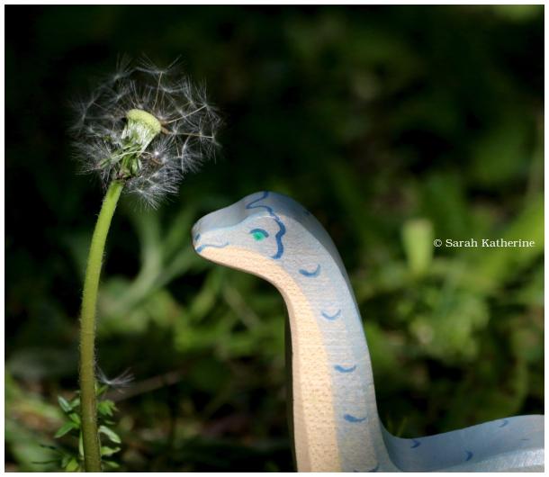 dinosaur, dandelion