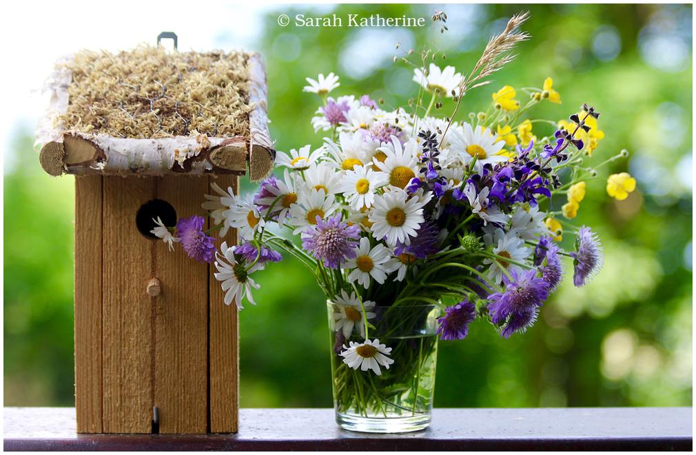 bird house, wildflowers, spring
