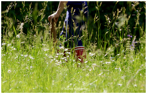wellies, hands, wildflowers