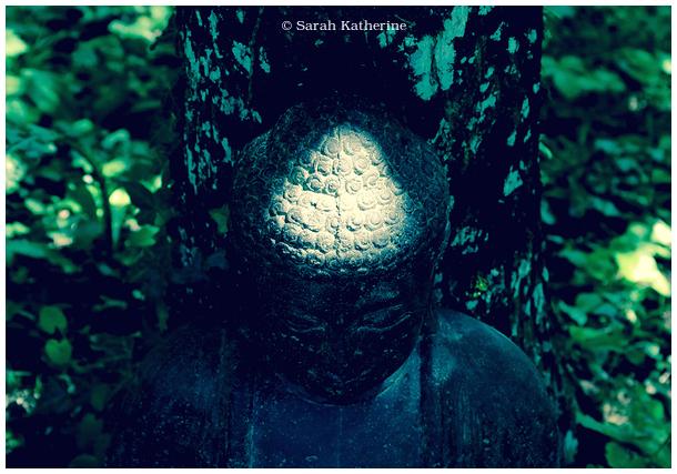 Buddha, sunlight, statue