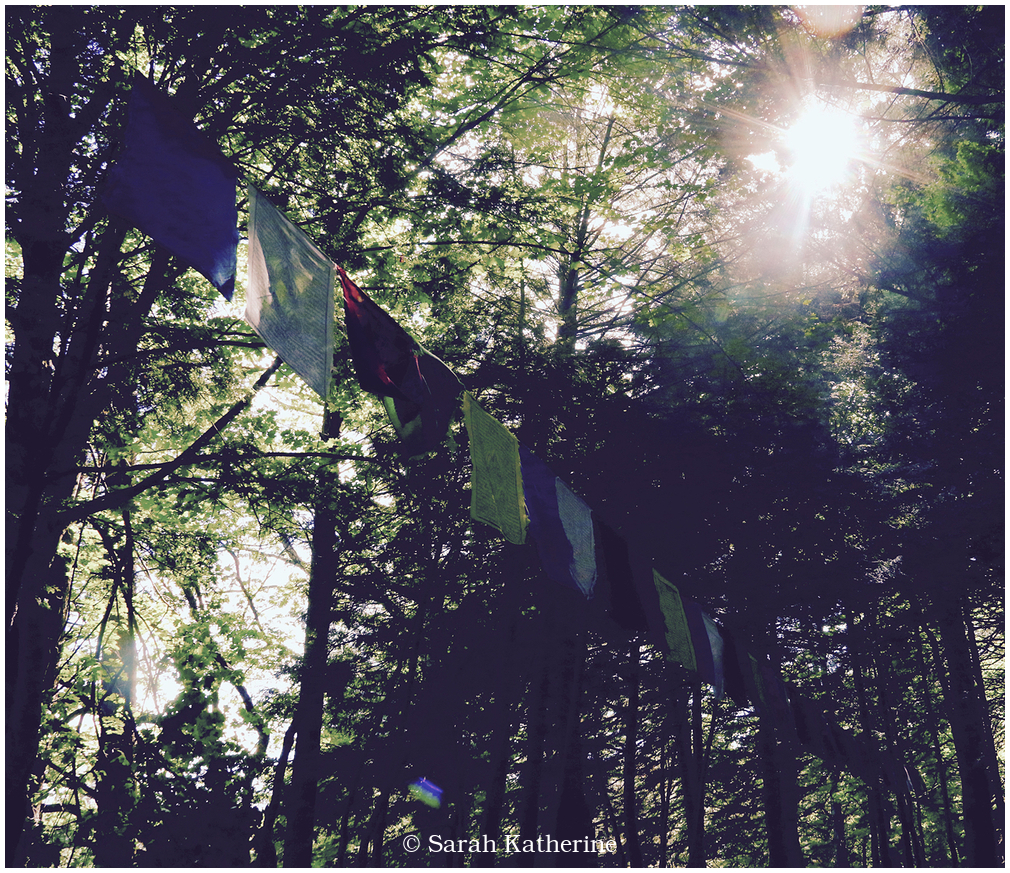 sun, solstice, prayer, flags