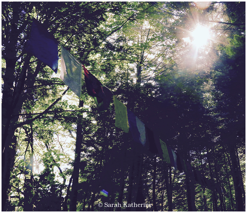 sun, solstice, prayer, flags