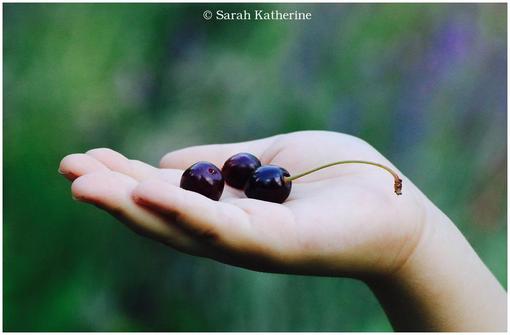 hand, cherries