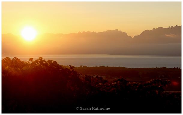 sunrise, lake, mountains, vines, autumn