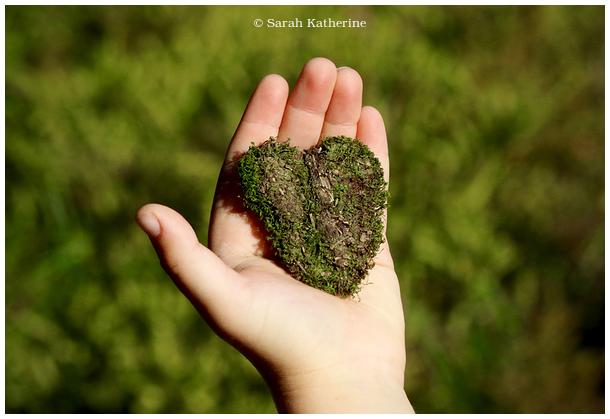 hand, heart, moss