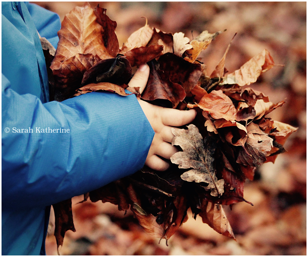 Holding Autumn