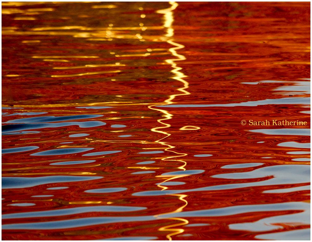 lake, autumn, tree, colours