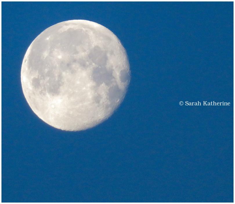 moon, morning