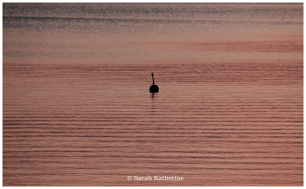 buoy, lake, water, sunset, winter