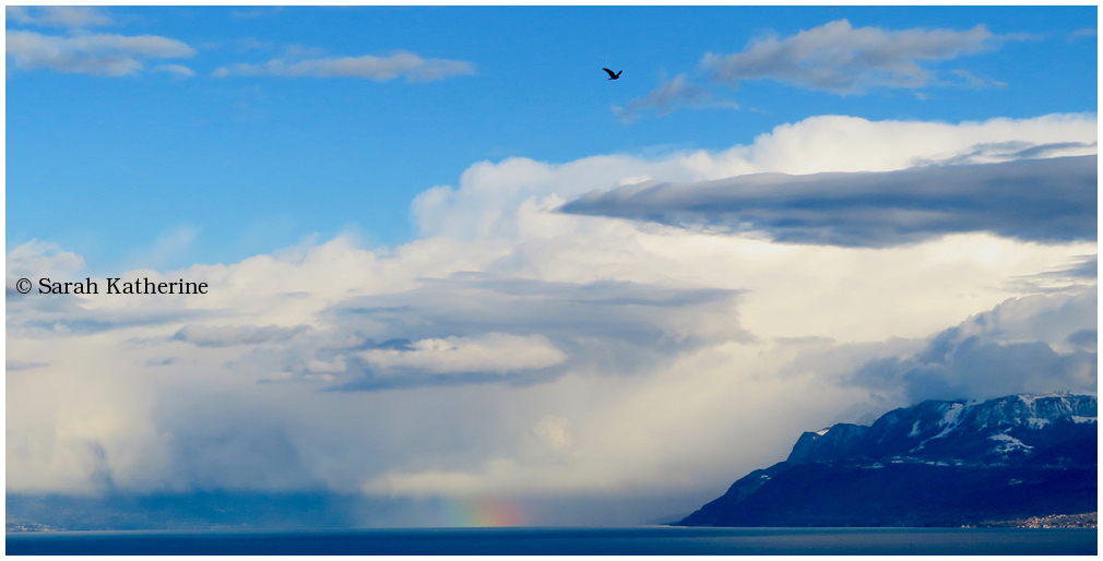 lake, mountain, cloud, rainbow, hawk, winter