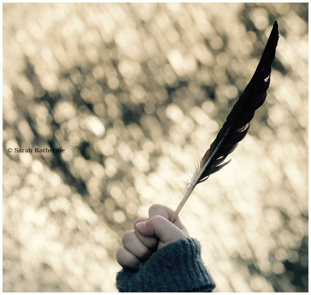 hand, hold, feather, wild