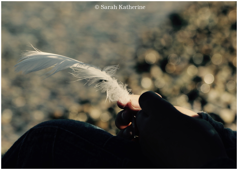 hand, feather, spring, lake