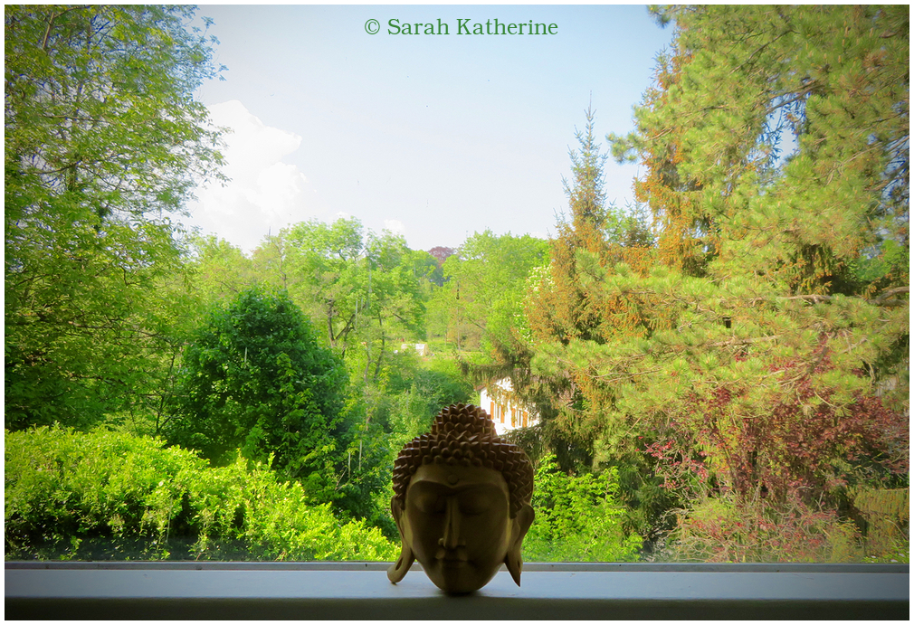 Buddha, statue, trees, window