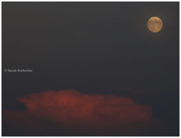moon, cloud, autumn, sky