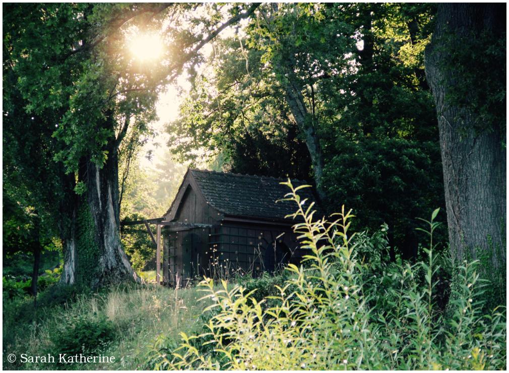 Sun & Sanctuary