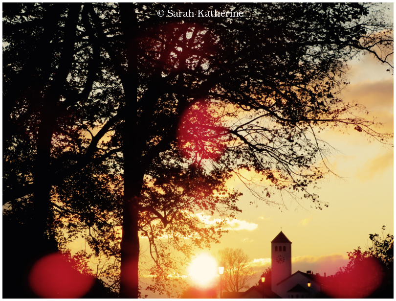 autumn, sun, village, light, trees