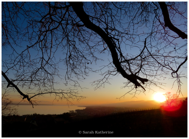 A Soft Spot for a February Sunset