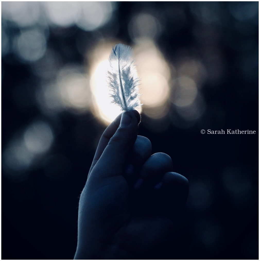 sunlight, feather, hand, fingers