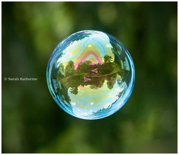bubble, garden
