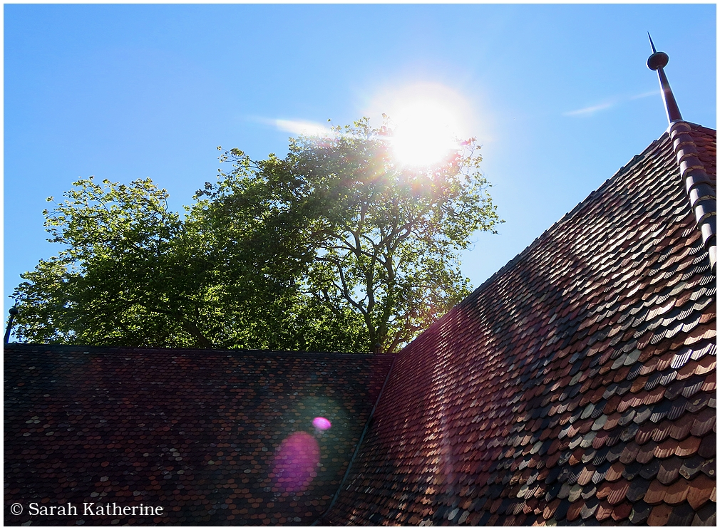 sun, roof, tiles, tree, summer