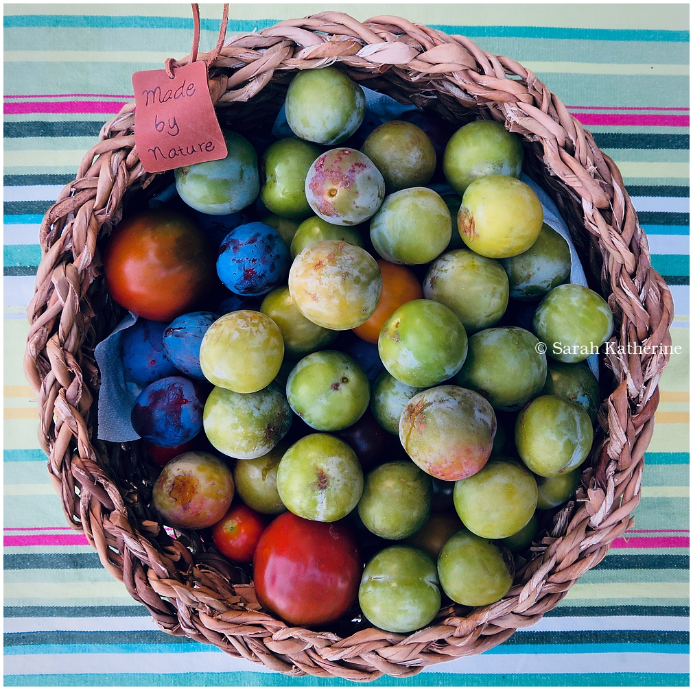 plums, tomates, basket, summer, fruits